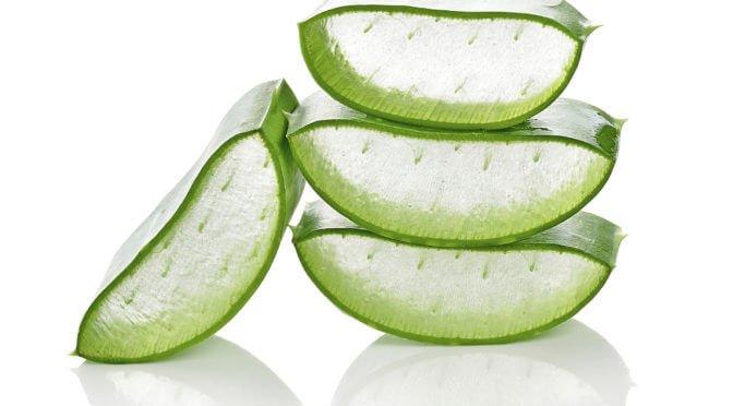 The Amazing Healing Powers of Aloe Vera