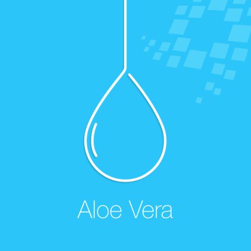 Why We Love Aloe Vera #IngredientHighlight