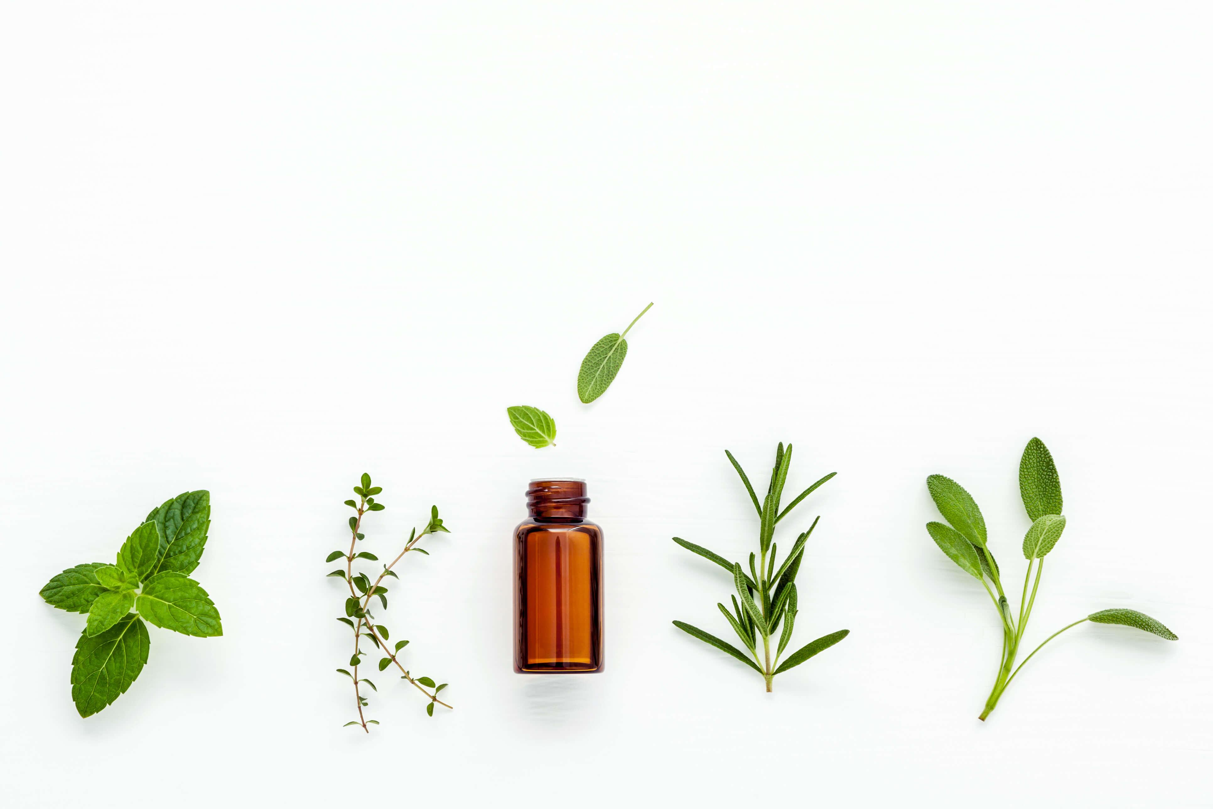 essential oils pregnancy calgary